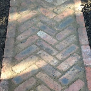 Herringbone path in reclaimed bricks